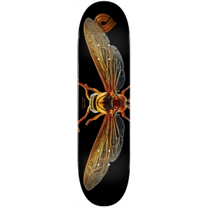 Biss Potter Wasp Deck